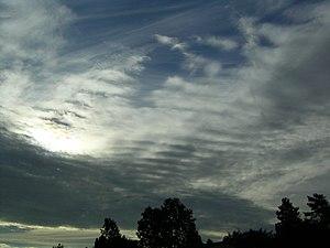 Altostratus undulatus cloud - Image: Cirrus and Altostratus undulatus