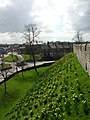 City Walls - geograph.org.uk - 146583.jpg