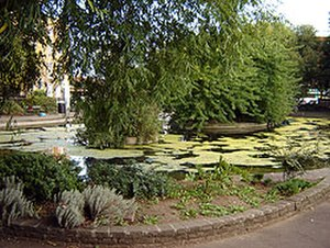Clapton Pond - Another view of Clapton Pond