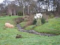 Cliffe cottages and stream.jpg