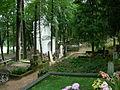 CmentarzDruskienniki1.JPG