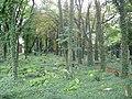 Cmentarz żydowski w Katowicach 08.JPG