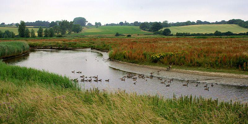 File:Cmglee Manningtree River Stour.jpg