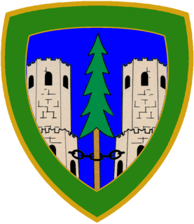 "Alpine Brigade ""Cadore"""