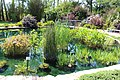 Coastal Georgia Botanical Gardens, Water garden 1.jpg