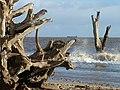 Coastal erosion at Benacre Broad, plus ship - geograph.org.uk - 926585.jpg