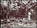 Collectie Nationaal Museum van Wereldculturen TM-60062269 Arbeiders tijdens hun pauze op een bananenplantage Jamaica J.W.C. Brennan (Fotograaf).jpg