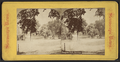 Congress Park, Saratoga, from Robert N. Dennis collection of stereoscopic views.png