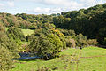 Corickmore Friary Junction of River Glenelly with River Owenkillew 2012 09 21.jpg