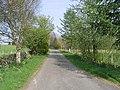 Country road - geograph.org.uk - 419210.jpg