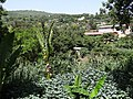 Countryside outside Old City Walls - Harar - Ethiopia (8749462861).jpg