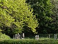 Crosses at Lewtrenchard - geograph.org.uk - 430563.jpg