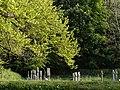 Crosses at Lewtrenchard - geograph.org.uk - 430563.jpg