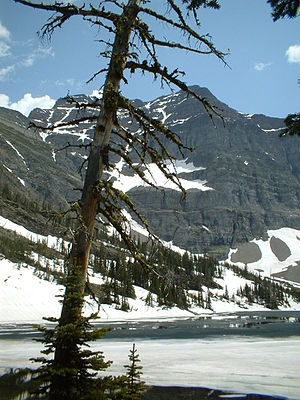 Crypt Lake Trail - The shores of Crypt Lake