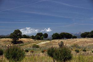 Cuenca del río Manzanares Monte del Pardo 14