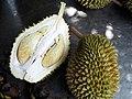 D17 - Durian.jpg