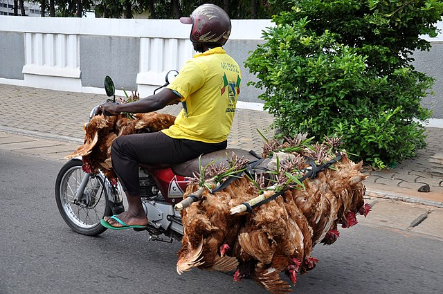 Venditore di polli in Benin