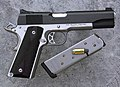 Dan Wesson DW Patriot (PT E 45).jpg