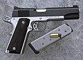 Dan Wesson DW Patriot (PT E 45).jpg