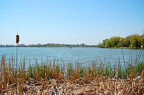 Property Search Darlington Pa