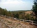 Dealuri și păduri - Boia Bârzii - panoramio.jpg