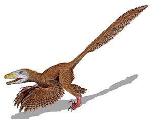 Certains archéologues pensaient que le deinonychus ressemblait à un oiseau.