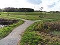 Delft - Kerkpolder - panoramio - StevenL (1).jpg