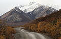 Denali road and snow covered mountains.jpg