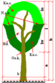 Diagram tree.png
