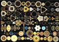Different shapes of diatoms.png