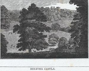 Dinevor Castle
