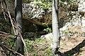 Dolina rečice Perast 23.jpg