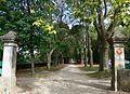 Domaine de serre de parc, l'allée.jpg