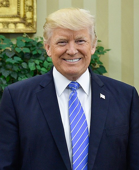 Archivo Donald Trump In The Oval Office June