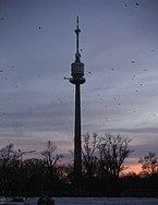 DonauturmSunset.jpg