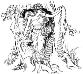 От др.-греч. Δρυς— «дуб» произошло имя нимф Дриад— покровительниц деревьев в греческой мифологии[11].