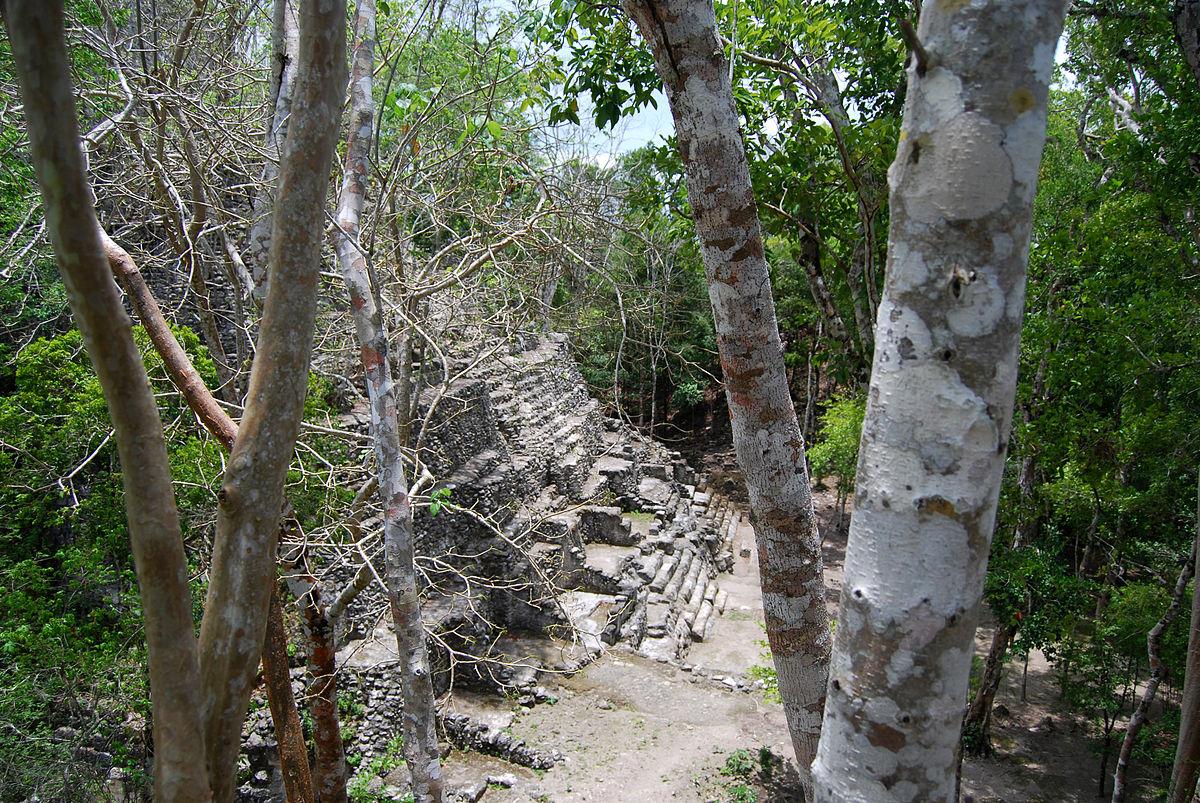 El mirador ciudad maya wikipedia la enciclopedia libre for El mirador de villalbilla