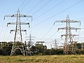 Electricity pylons at the sub-station in Trowse - geograph.org.uk - 1391733.jpg