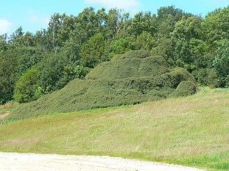 Robert Smithson - Image: Emmen Smithson Spiral Hill