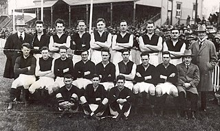 1924 VFL season