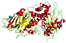 ExotoxinA (Pseudomonas aeruginosa)