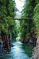 Exploradores Costa Rica - Bridge.jpg