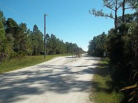FL Myakka State Forest west03.jpg