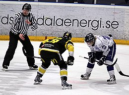 Photographie couleur d'un match de hockey
