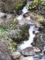 Falls near Low Sweden Bridge - geograph.org.uk - 292889.jpg