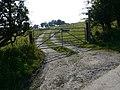 Farm road to Garn Uchaf - geograph.org.uk - 979956.jpg