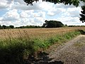 Field beside the church - geograph.org.uk - 923978.jpg