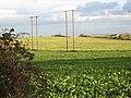 Field near Dalton Piercy - geograph.org.uk - 279052.jpg