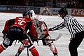 Finale de la coupe de France de Hockey sur glace 2013 - 052.jpg