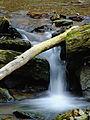 Flickr - Nicholas T - Apollo County Park (2).jpg